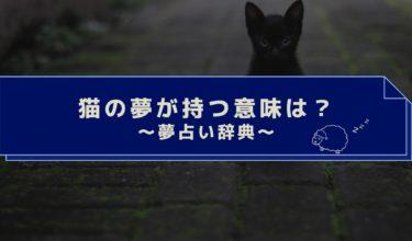 夢占い 猫の夢は女性的なトラブルの前兆!猫が死ぬ・噛まれる夢はやばい!?